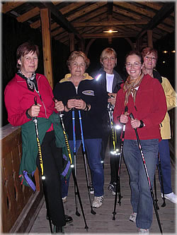 Nordic Walking in Bad Goisern